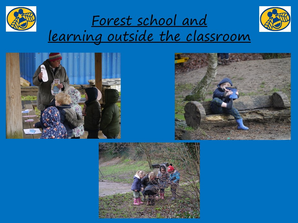 Slide 4 - Forest School and LOTC